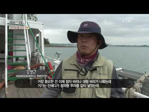 [사이언스 TV] 한국사 탐 - 선비정신을 담다, 벼루
