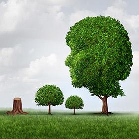 식물들은 생각을 할까?