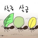 카툰임파서블① – 새발의 피