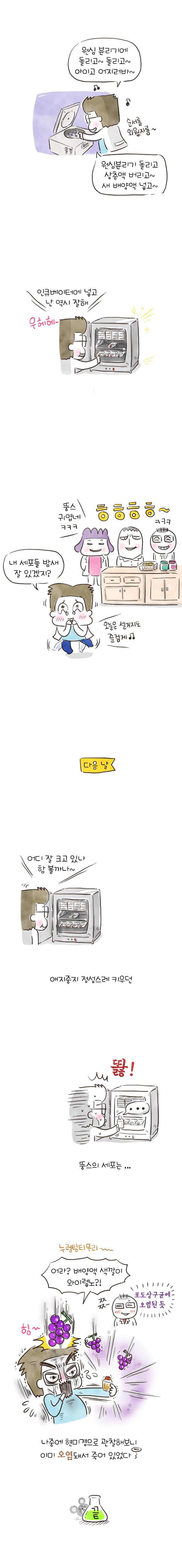 06_세포배양_2