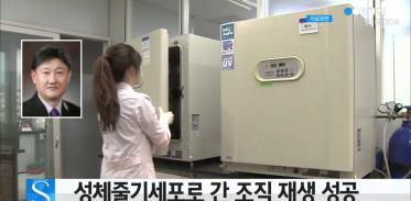 [사이언스 TV] 성체줄기세포로 간 조직 재생 성공