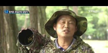 [사이언스 TV] 멸종위기종 팔색조의 새끼 키우기…35일간의 영상 공개