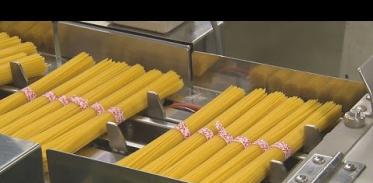 스파게티와 마카로니는 어떻게 만들어질까?