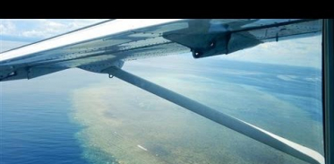 이상고온현상은 호주의 그레이트 배리어 리프(Great Barrier Reef)를 파괴하고 있다.