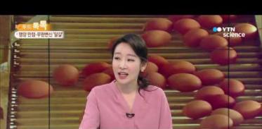 [사이언스 TV] 영양 만점·무한 변신 '달걀'…신선한 섭취법은?