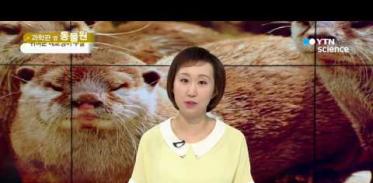 [사이언스 TV] 귀여운 얼굴의 포식자 '수달'