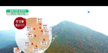 [사이언스 TV] 올해 가을 단풍, 예년보다 늦어진다…설악산 27일 첫 단풍