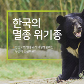 한국의 멸종 위기종