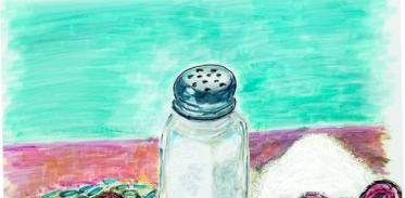 [사이언스타임즈] 소금이 장내 미생물에 영향 준다