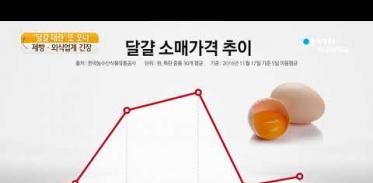 [사이언스 TV] 고창 AI로 '달걀 대란' 또 오나…제빵·외식업계도 긴장