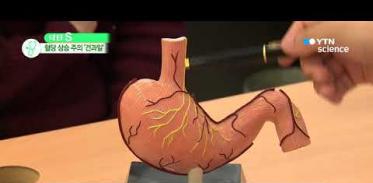 [사이언스 TV] '과일 처방전'…질환별로 주의해야 할 과일은?