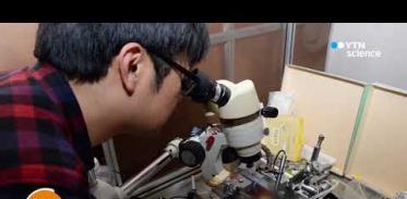 [사이언스 TV] 몸 안에 장기간 심을 수 있는 유연한 신경 전극 개발