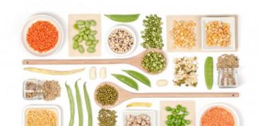 [사이언스타임즈] 식물성 식사, 장점과 단점은?