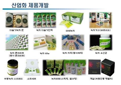 [사이언스타임즈] 차(茶), 음료를 넘어 다양한 산업화로