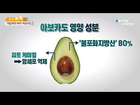 [사이언스TV] 과일계의 버터 아보카도