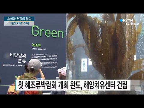 [사이언스TV] 휴식과 건강의 결합 '자연 치유' 뜬다