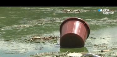 [사이언스TV] 환경오염 의식 커져 82% 미세먼지 불안