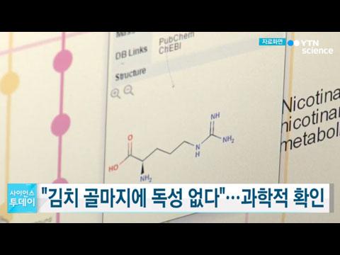 [사이언스TV] 김치 골마지에 독성 없다 과학적으로 확인