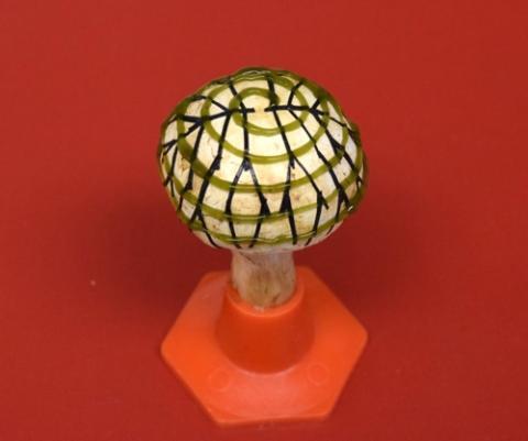 [사이언스타임즈] 전기 생산하는 양송이버섯
