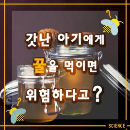 갓난아기에게 꿀을 먹이면 위험하다고?
