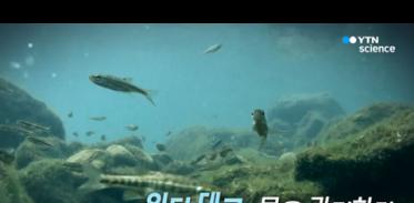 [사이언스TV] 워터테크, 물을 관리하다