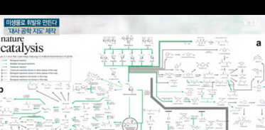 [사이언스TV] 대장균에서 휘발유·플라스틱을 대사공학 집대성 지도 완성
