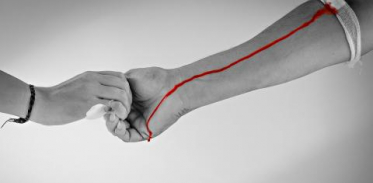 [사이언스타임즈]FDA, 젊은 피 수혈 왜 금지했나