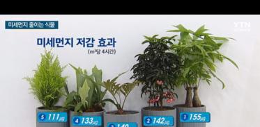 [사이언스TV] 실내 미세먼지 식물로 줄인다