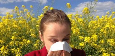 [사이언스타임즈] 기후변화, 알레르기 비염 부추겨