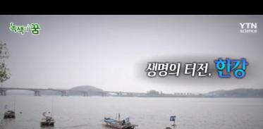 [사이언스TV] 생명의 터전, 한강