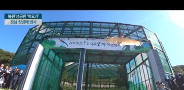[사이언스TV] 40년 전 사라졌던 따오기 복원 창녕 하늘로 날아올라