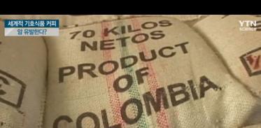 [사이언스TV] 세계적 기호식품 커피, 암 유발한다?