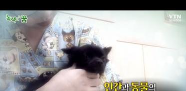 [사이언스TV] 반려동물, 인간과 동물의 행복한 공존법