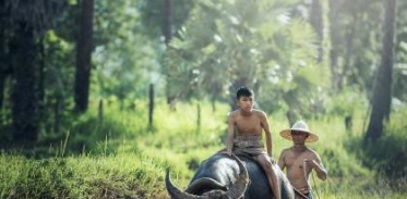 [사이언스타임즈] 생물 멸종 방지 비책은 '원주민'