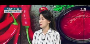 [사이언스TV] 매운 음식이 치매위험 높인다, 캡사이신의 부작용