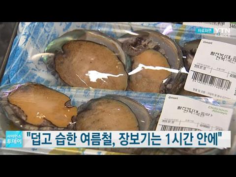 [사이언스TV] 식약처, 여름 휴가철 식품·의약품 건강안전 정보 제공