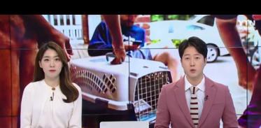 '키우다 포기 마세요' 美 반려동물 무료돌봄 지원에 저소득층 '반색'