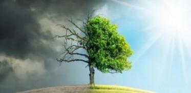 [사이언스타임즈] IPCC, 세기말 기후재난 경고