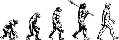 [사이언스타임즈] '인류 진화' 삽화 사용금지 촉구