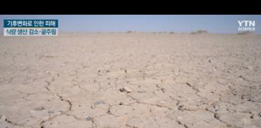 기후변화로 인한 절대적 기근, 어떻게 대비해야 하나?