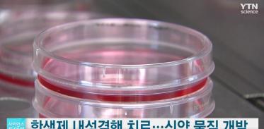 항생제 내성결핵 치료, 신약 물질 개발