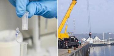 [사이언스타임즈] 해양 미생물, 대규모 탄소 순환에 관여