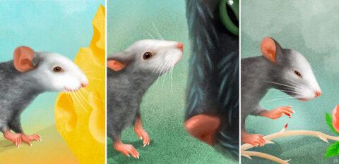 [사이언즈타임즈] 생쥐도 얼굴에 감정 표현한다