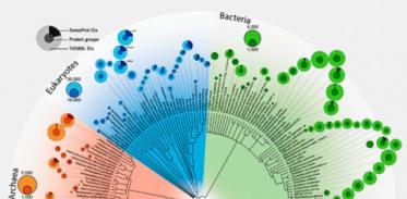[사이언즈타임즈] 모든 생물종의 단백질, 다르면서 비슷하다?