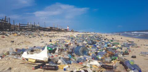 [사이언즈타임즈] 팬데믹 사태로 바다가 오염되고 있다