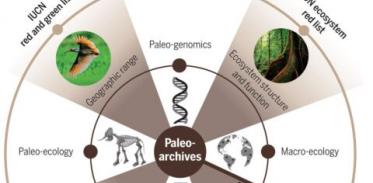 [사이언즈타임즈] '과거' 연구해 미래의 생물다양성 보존한다