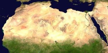 [사이언즈타임즈] 사막이 숲으로 변할 수 있을까?
